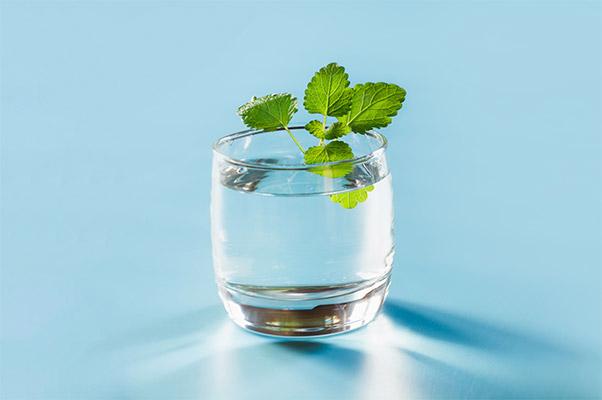 Kategoria Woda i napoje